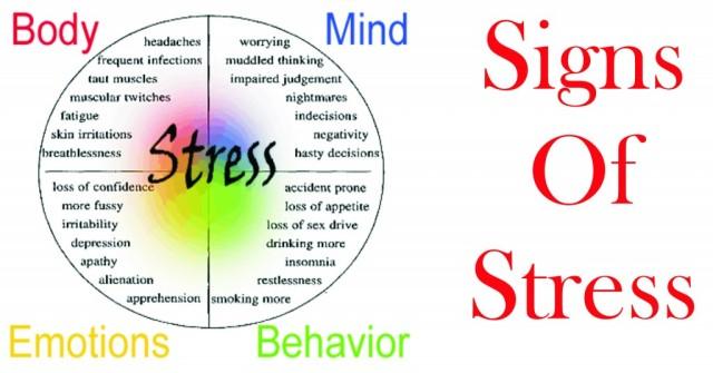 stress-1024x536